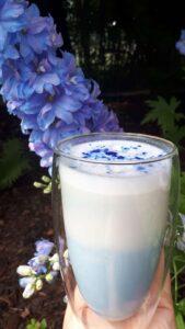 Niebieska latte ze spiruliną